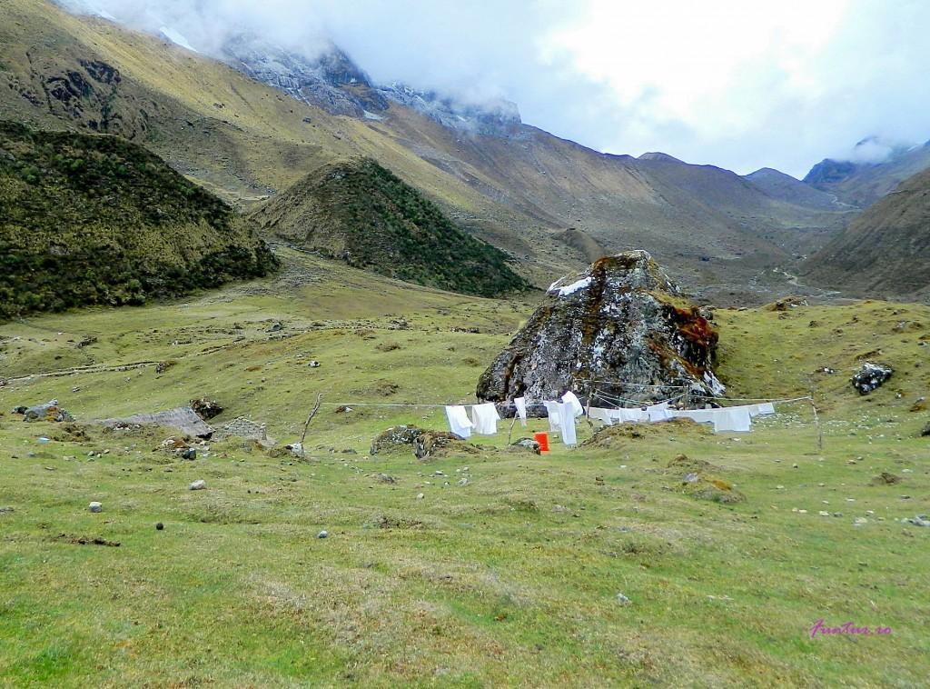 Rufe in muntii peruani